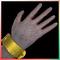 Albino Gorilla Hands