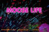 Moose Life anmeldelse